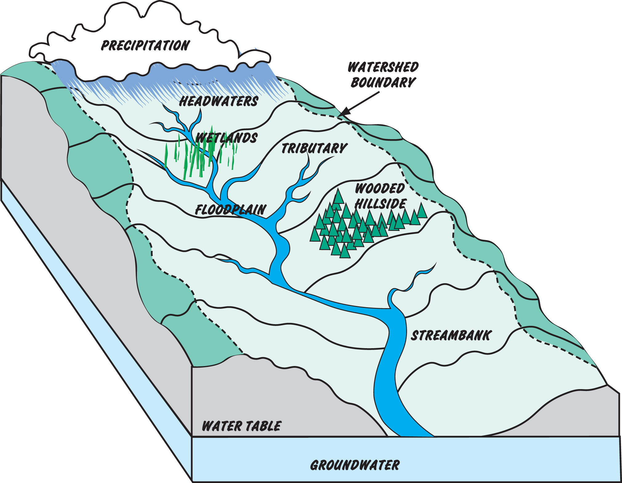 four types of drainage basin stores essay A river is a natural water generally collects in a river from precipitation through a drainage basin from surface runoff and other sources store water, or.