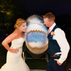 /assets/2240/shark-abby_hudson_photography.jpg