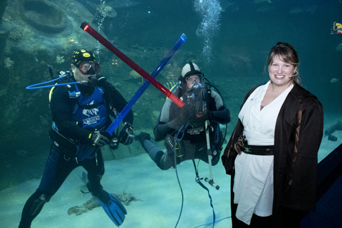 Two scuba divers in a large aquarium each hold lightsabers underwater. They cross the sabers as if in battle. In front of the aquarium with the divers, stands an educator dressed in a brown robe and looking at the camera.