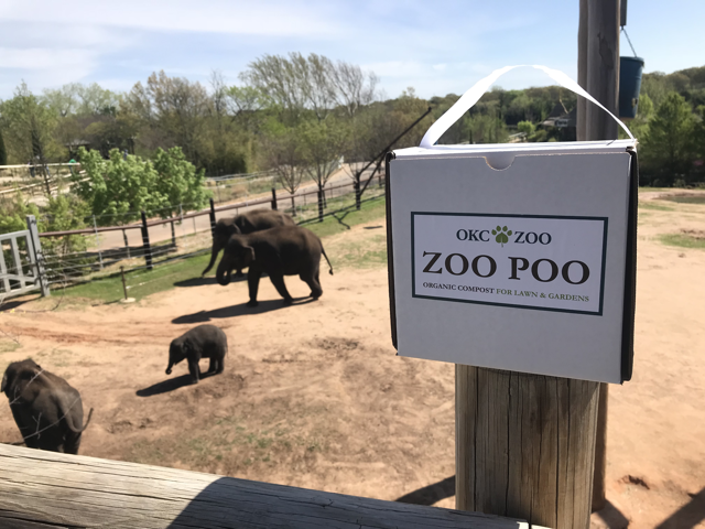 OKC Zoo Poo Box with Elephants