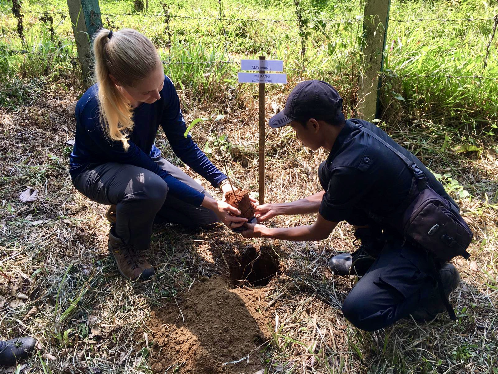 Planting a tree in the National Park