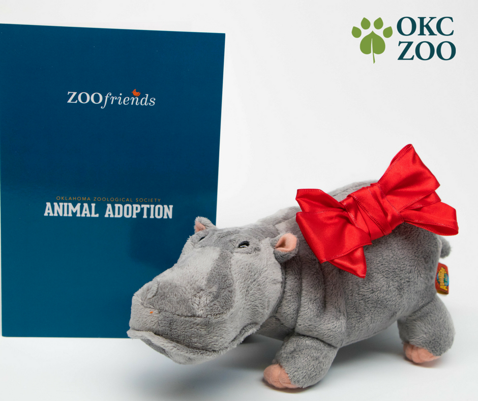 Five Wild Holiday Gift Ideas from the OKC Zoo