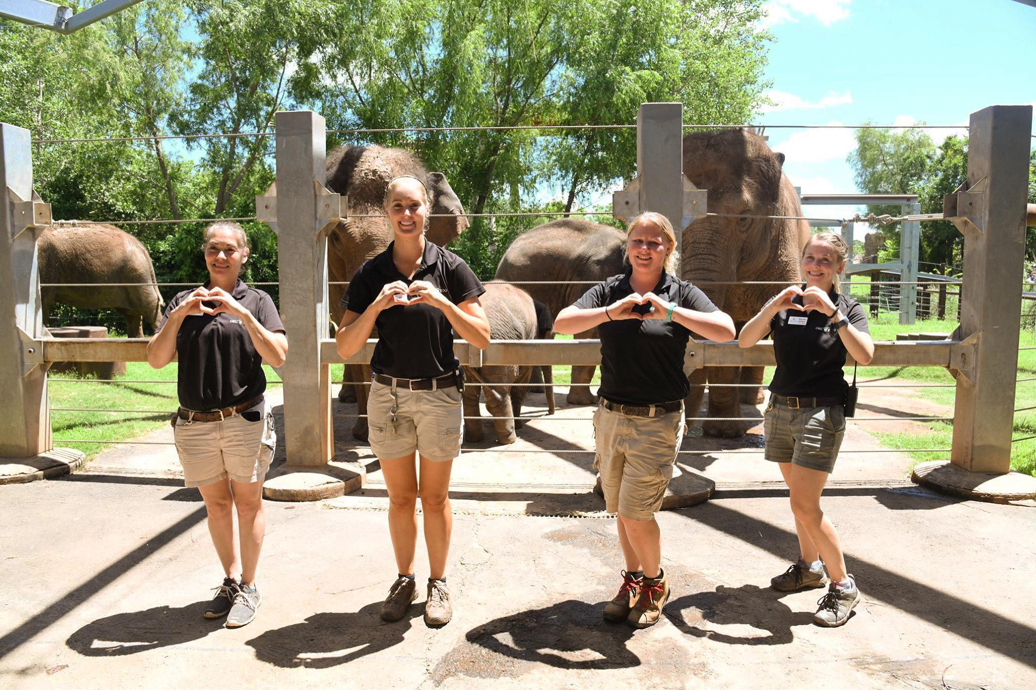 OKC Zoo Elephant Caretaker Team