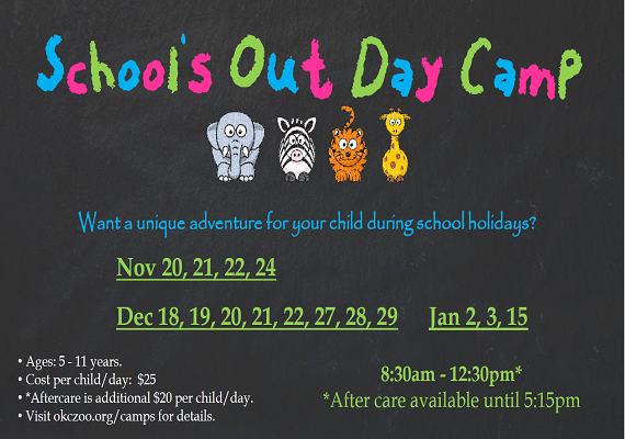Schools Out Day Camp 2