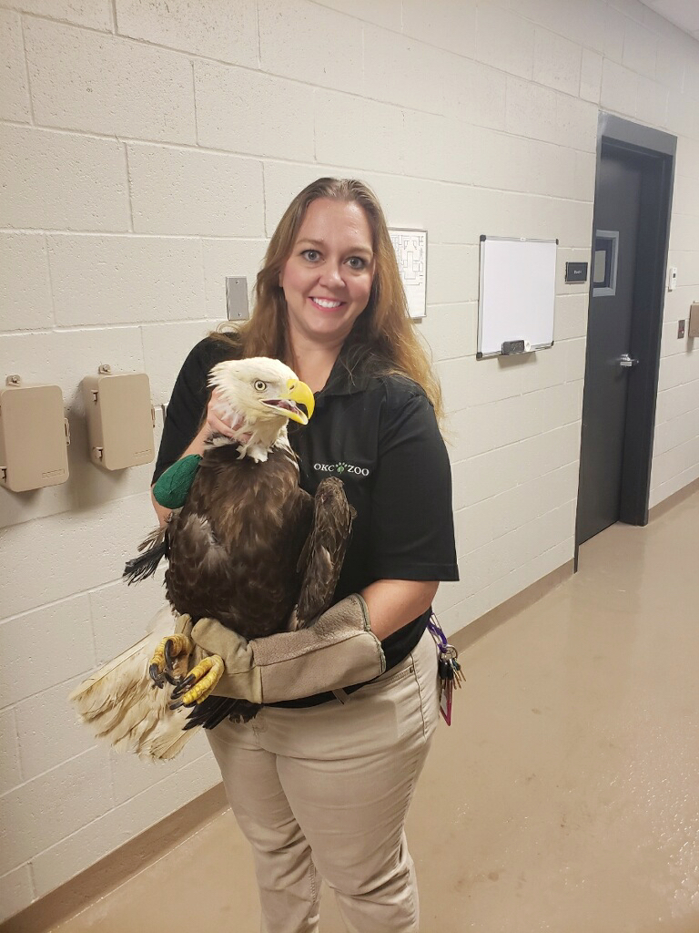 Stephanie with Bald Eagle