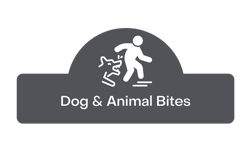 dog and animal bite button