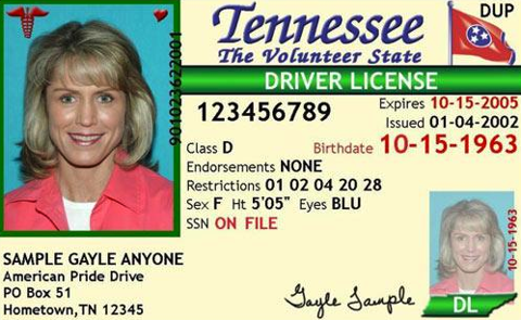 Tennessee Driver's License