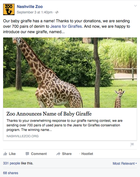 Nashville Zoo | Speak Creative | Social Media for nonprofits