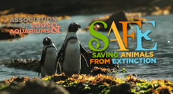 Image of African Penguins and logo of AZA and SAFE