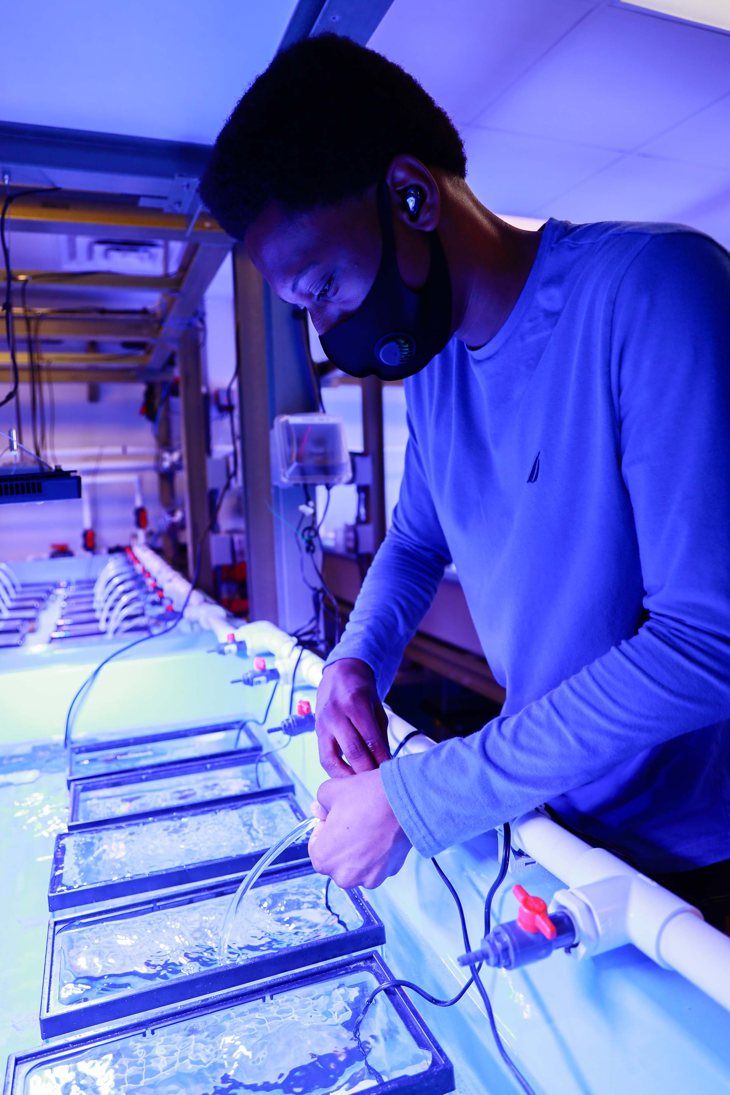 MarSci-LACE Intern Xavier Houston who works on data analysis with Postdoctoral Researcher Dr. Sara Williams in the Coral Health and Disease Lab at Mote Marine Laboratory in Sarasota, Fla. Photo Credit - © Mote Marine Laboratory