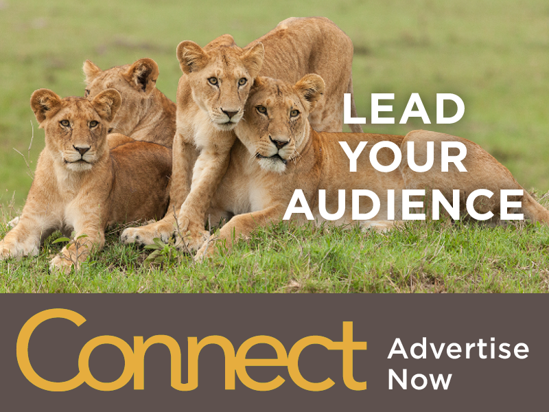 Lead Your Audience: Advertise with AZA