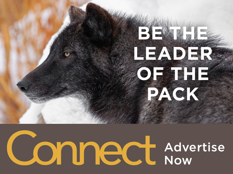 Be the leader of the pack - Advertise with AZA!