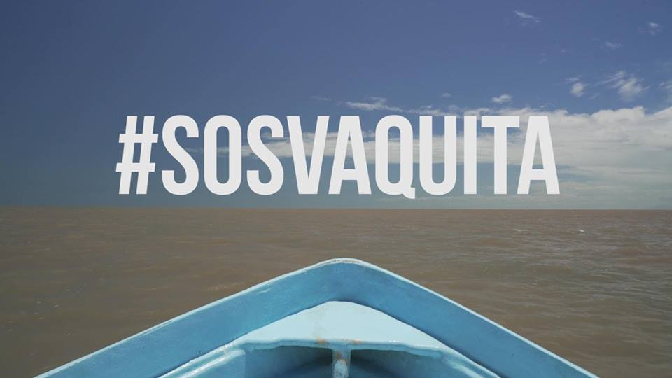 Image with the text # SOS Vaquita