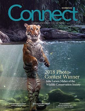 Connect Photo Contest