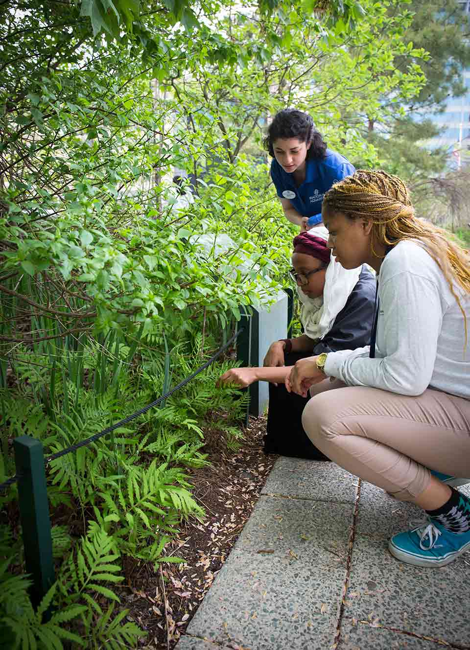 Guests crouch on a path through the National Aquarium's Certified Habitat.