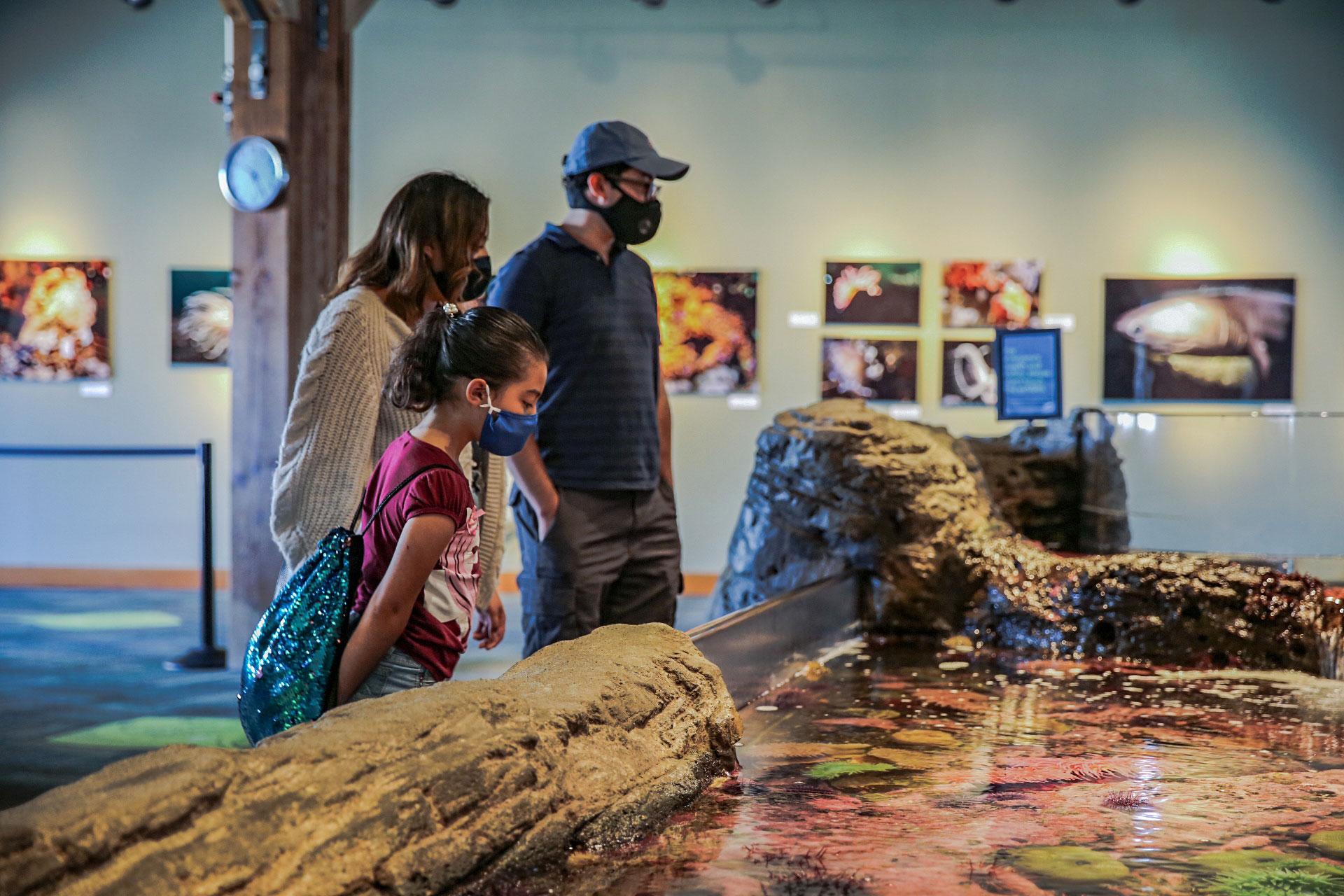 A family at Seattle Aquarium