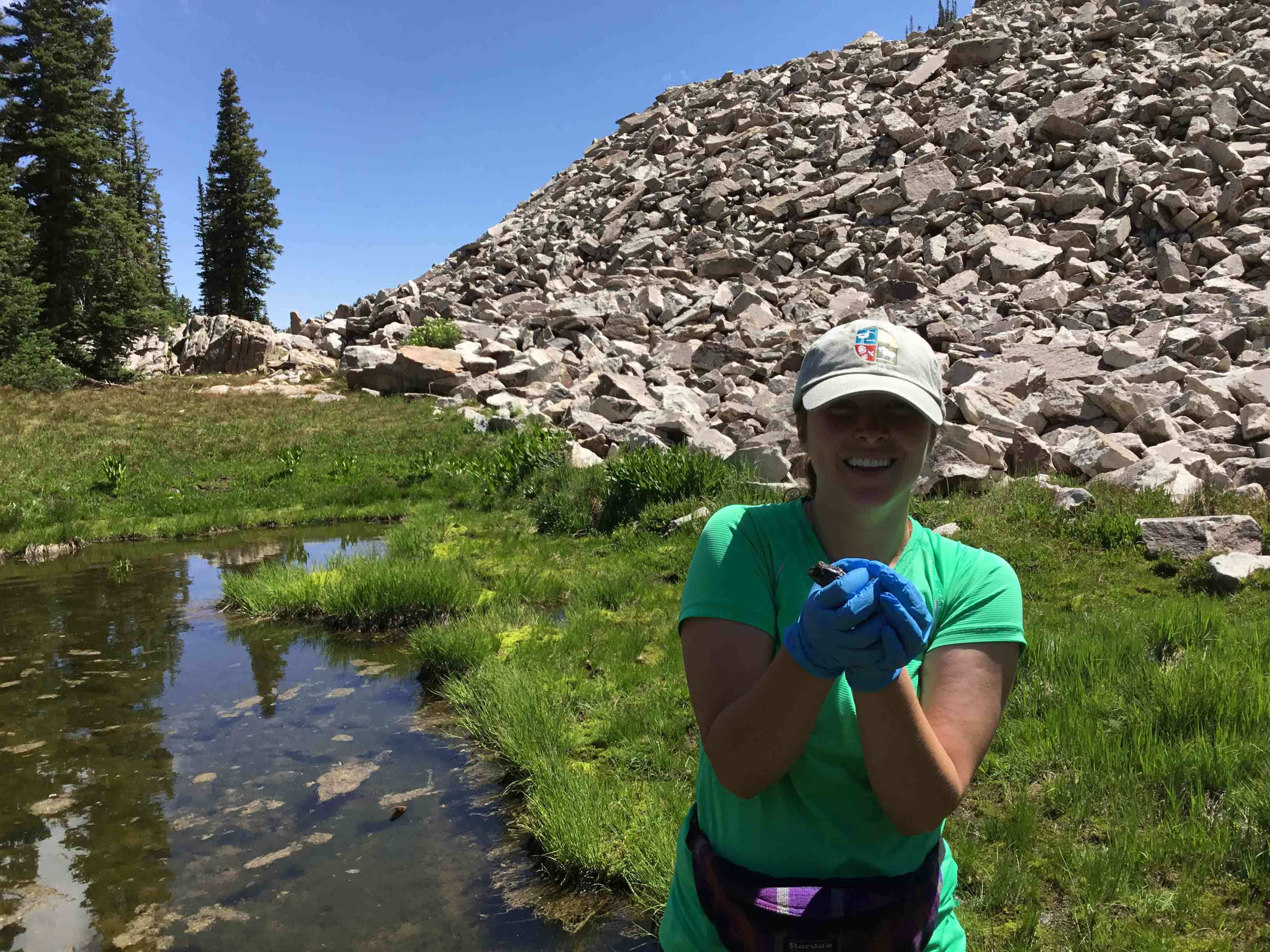Utah's Hogle Zoo staff with a boreal toad
