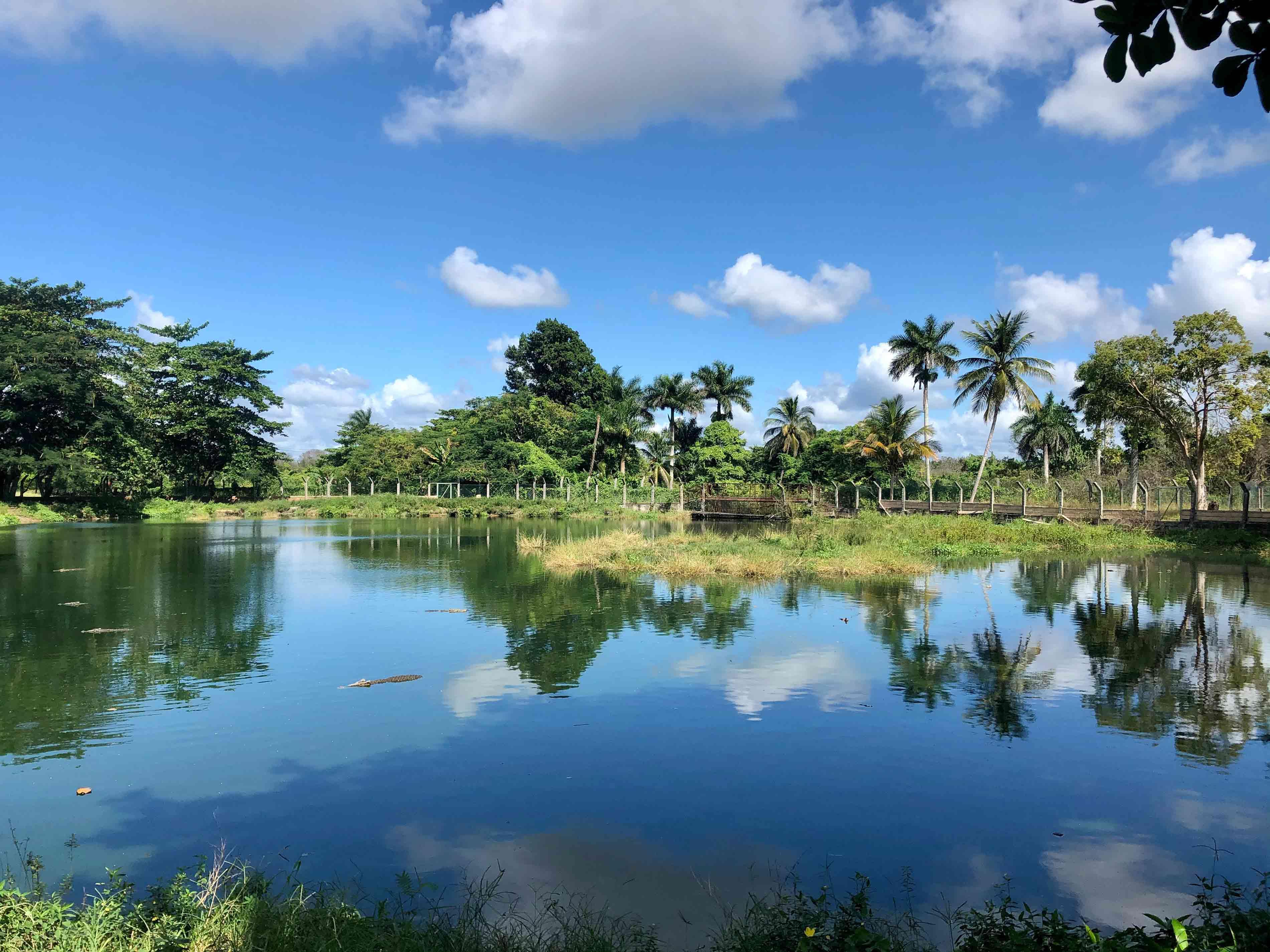 Zapata Crocodile farm