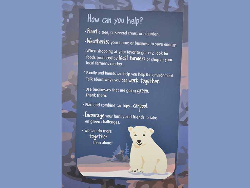 """Photo of a graphic titled """"How can you help?"""" with information on how you can help the climate and animals"""