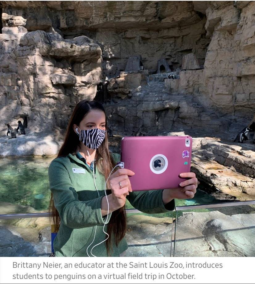 Brittany Neier, an educator at the Saint Louis Zoo, introduces students to penguins on a virtual field trip in October, 2020.