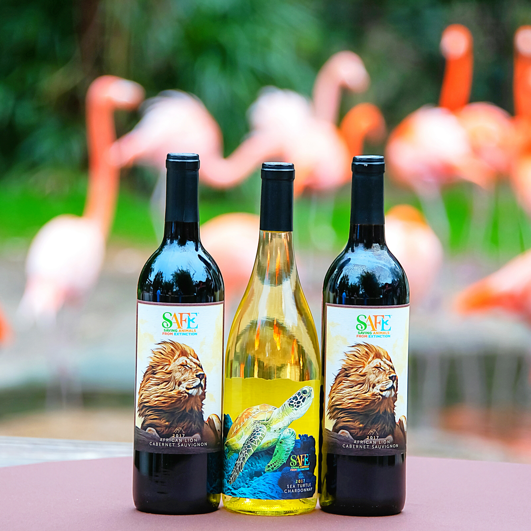 Three wine bottles, two red and two white with flamingos in the background