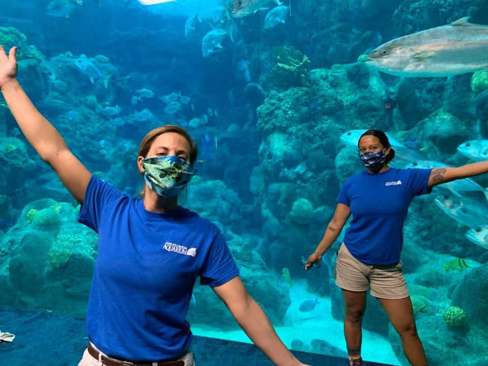 Florida Aquarium staff wearing masks