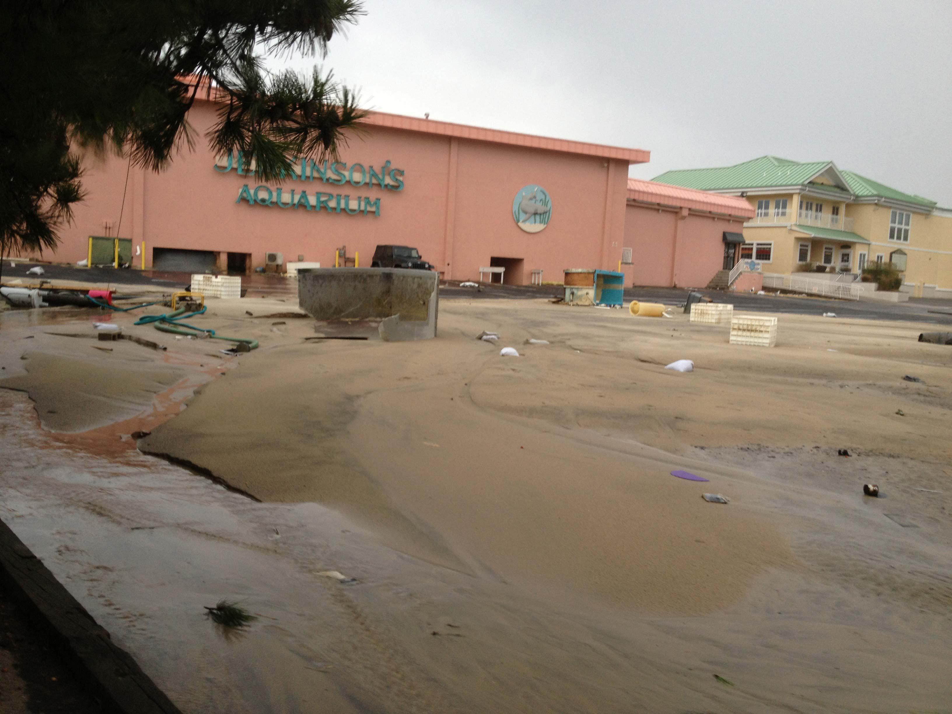 Photo of Jenkinson's Aquarium after Hurricane Sandy