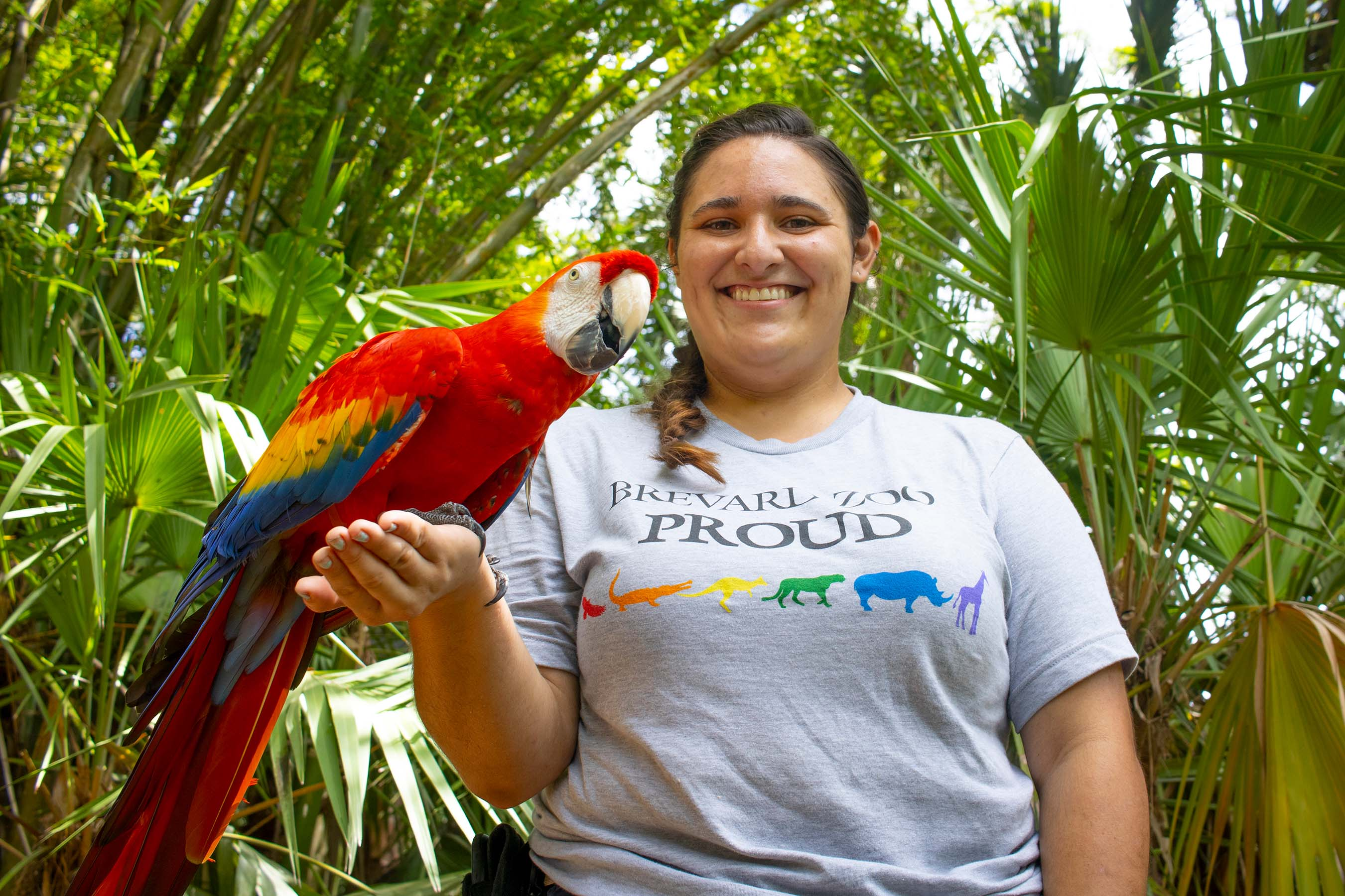 Keeper with a macaw at Brevard Zoo
