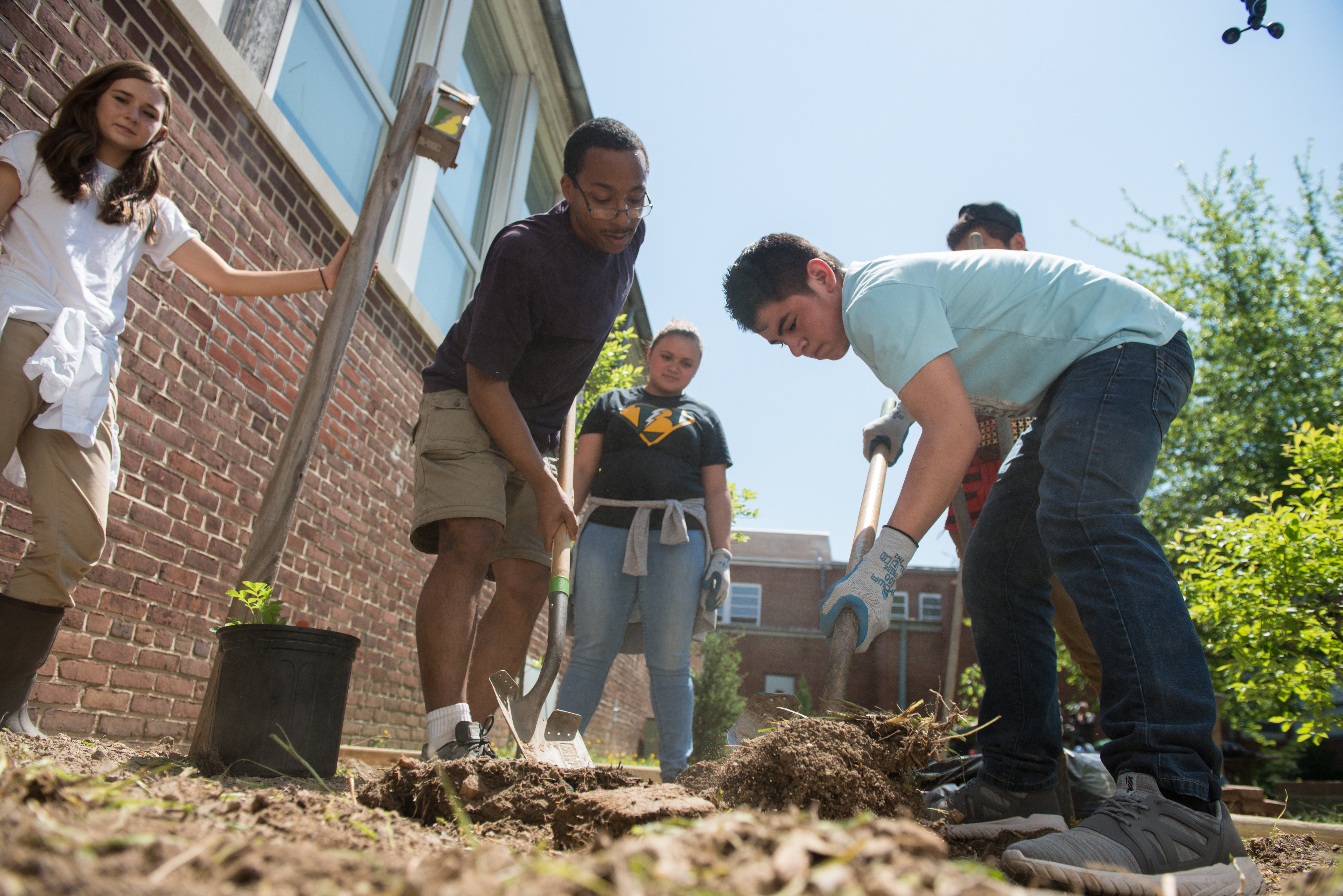 Three people watch as two males dig holes in the dirt to make a monarch garden