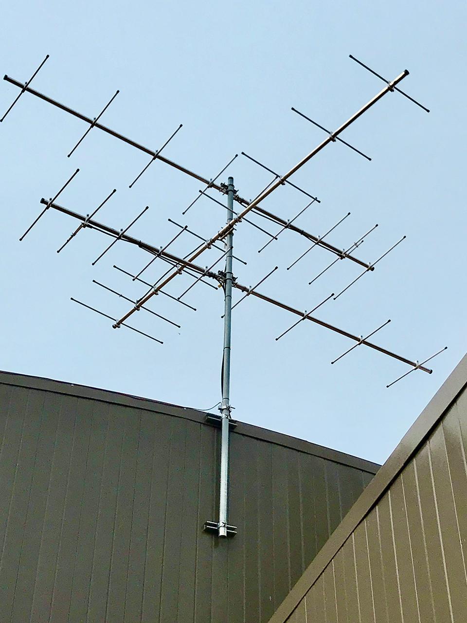 Motus antennae