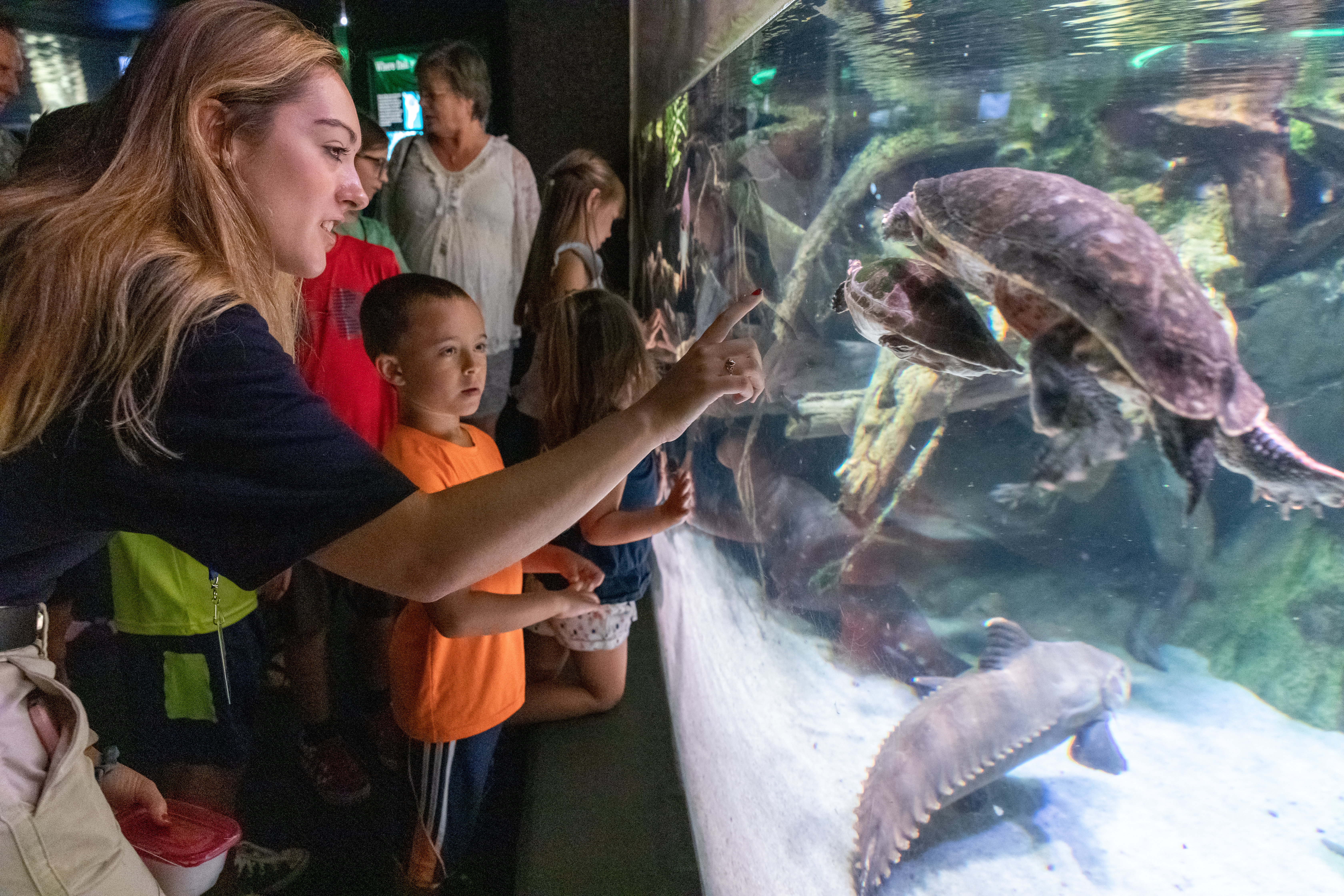 A camp counselor and camper look at turtles in an exhibit at the National Aquarium