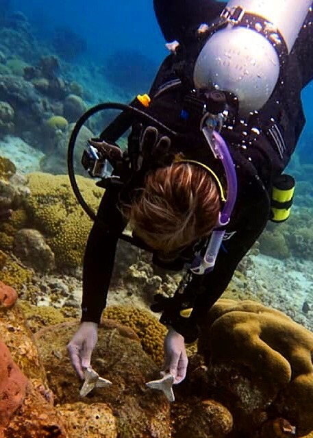 Planting coral in Curacao.