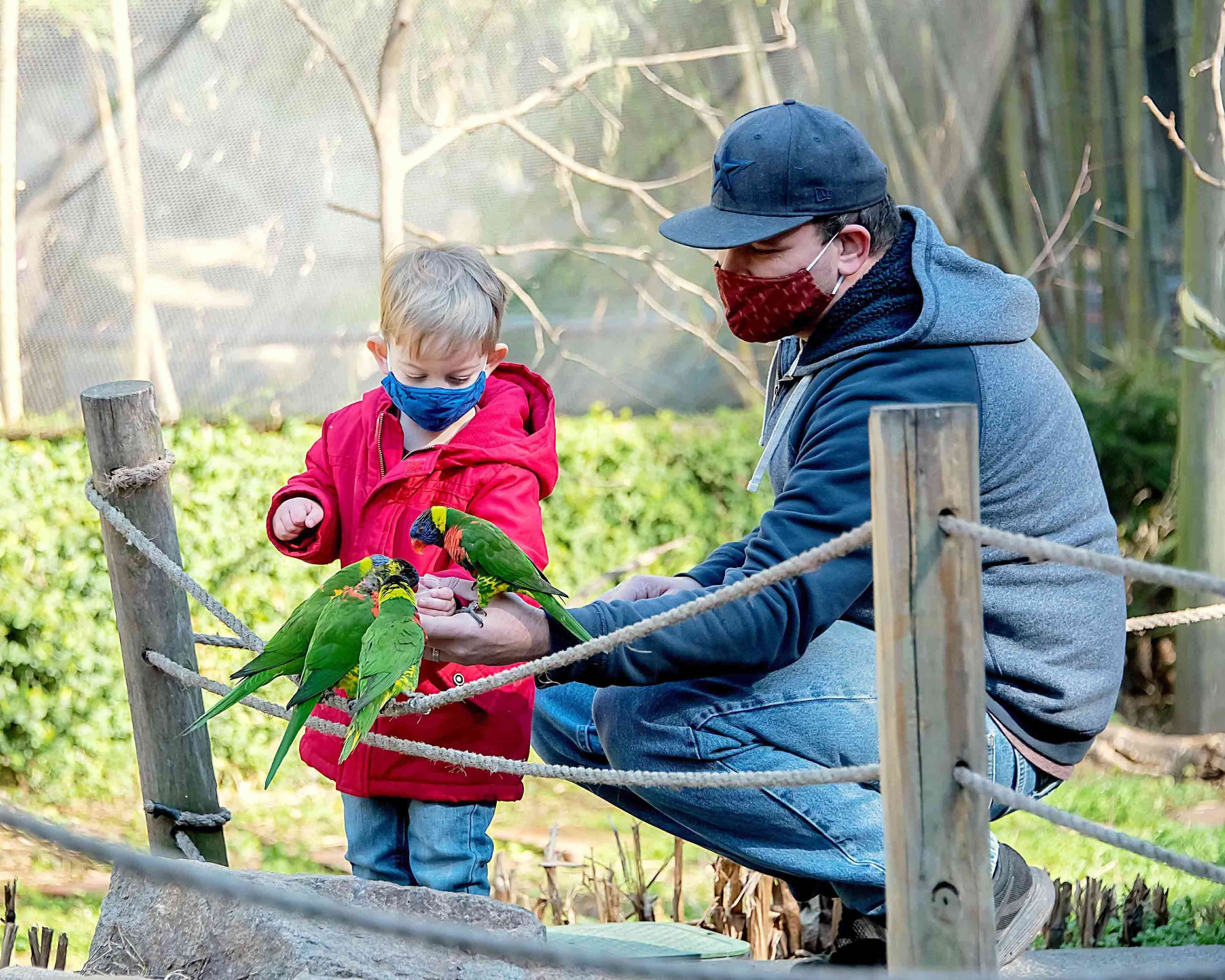 A man and child feed birds at Riverbanks Zoo and Garden