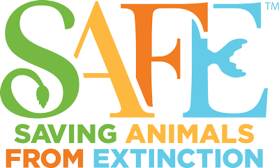 SAFE: Saving Animals From Extinction