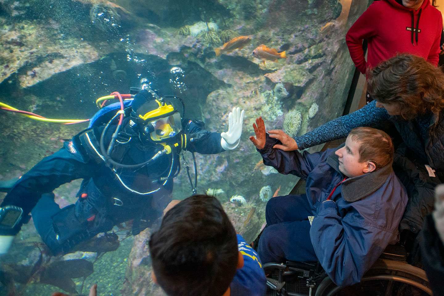 young man in wheelchair interacting with scube diver at aquarium