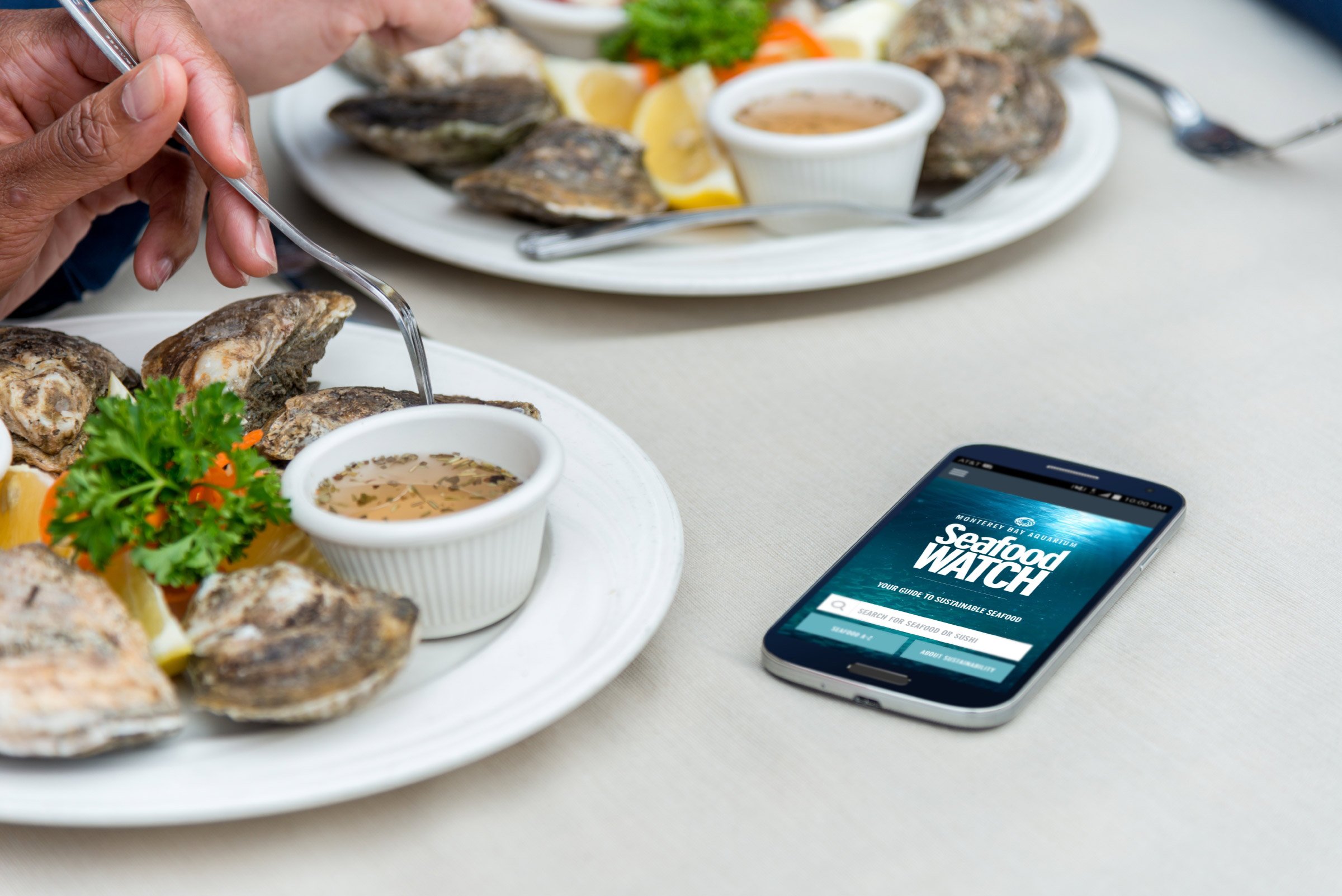 Seafood Watch app on a smartphone