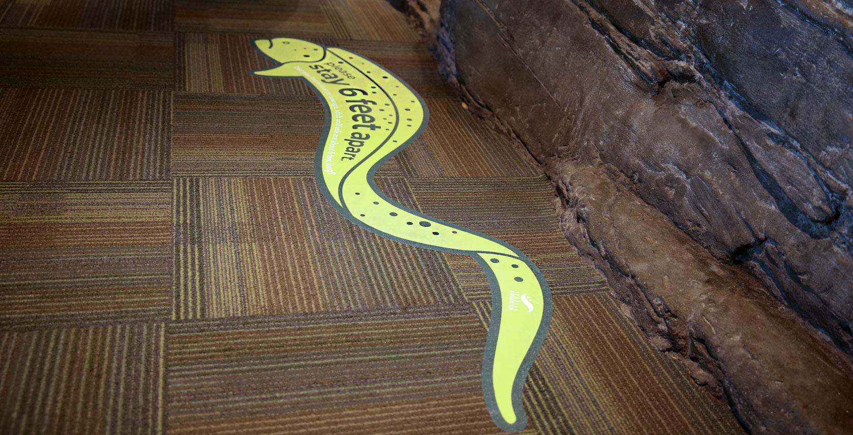 Seattle Aquarium's 'stay 6 feet apart' floor sign
