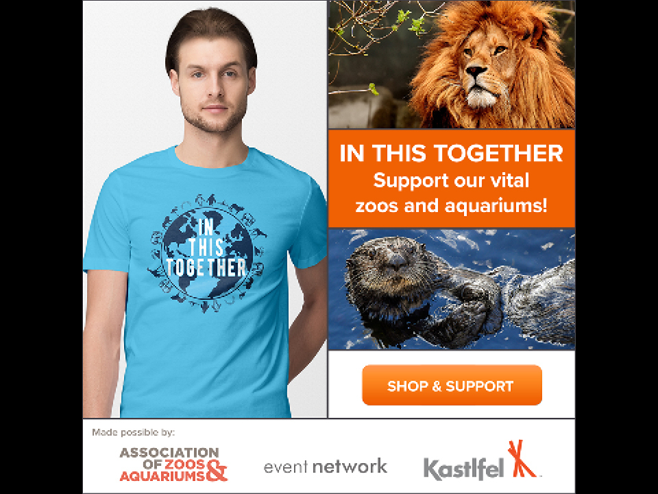 Promotional images for Event Network's t-shirt