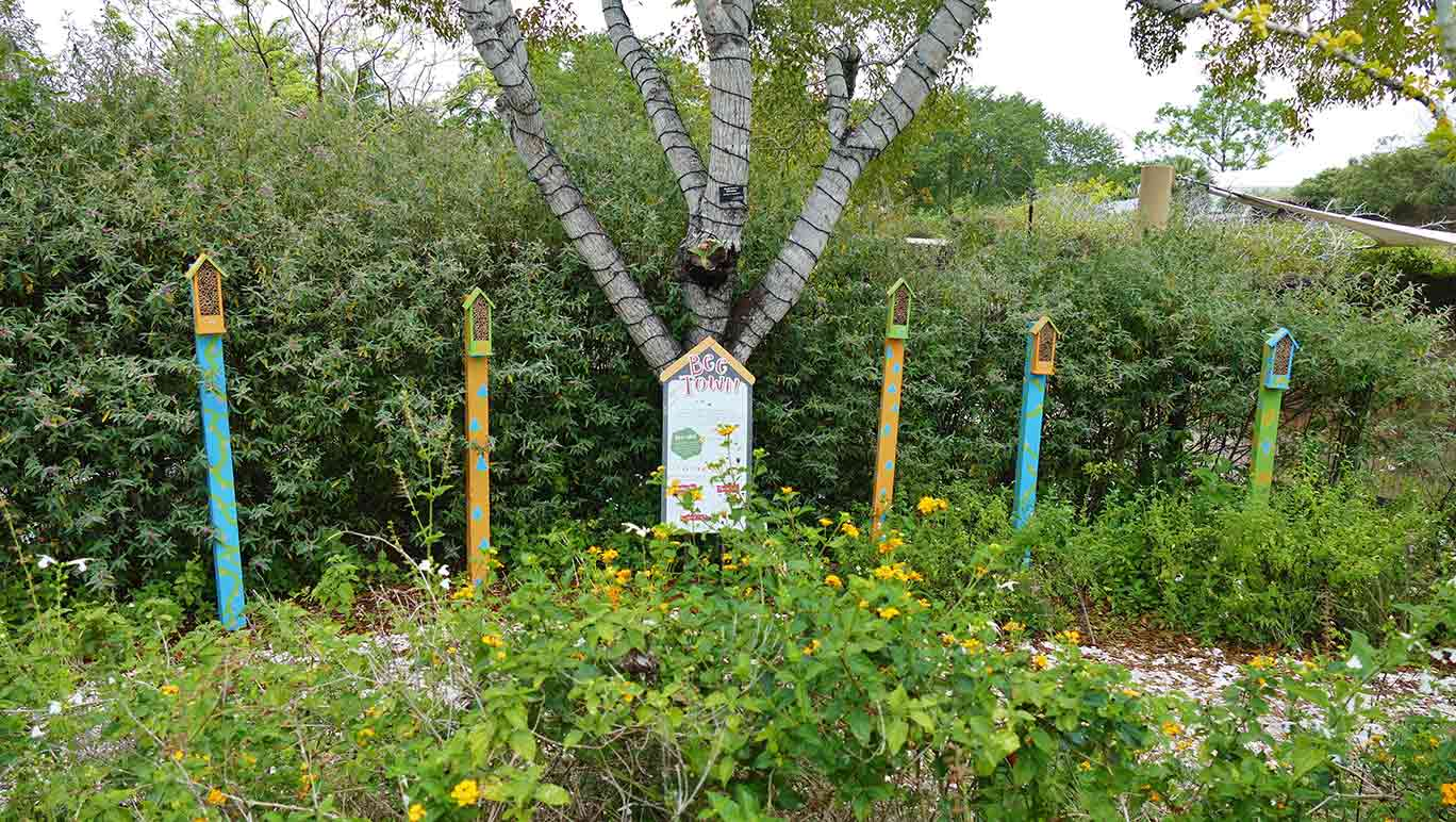 The certified pollinator garden at ZooMiami