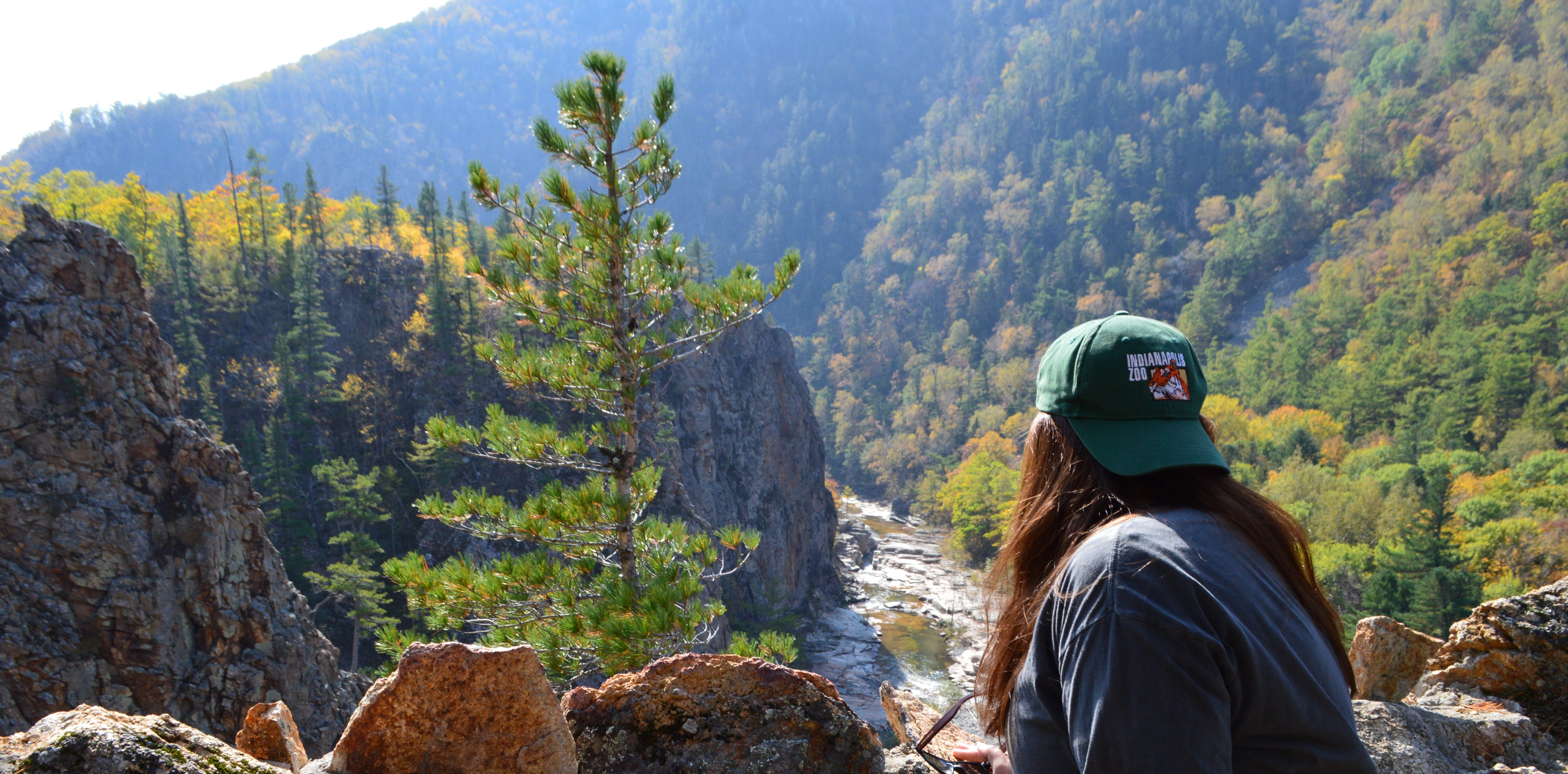 zovtigra national park