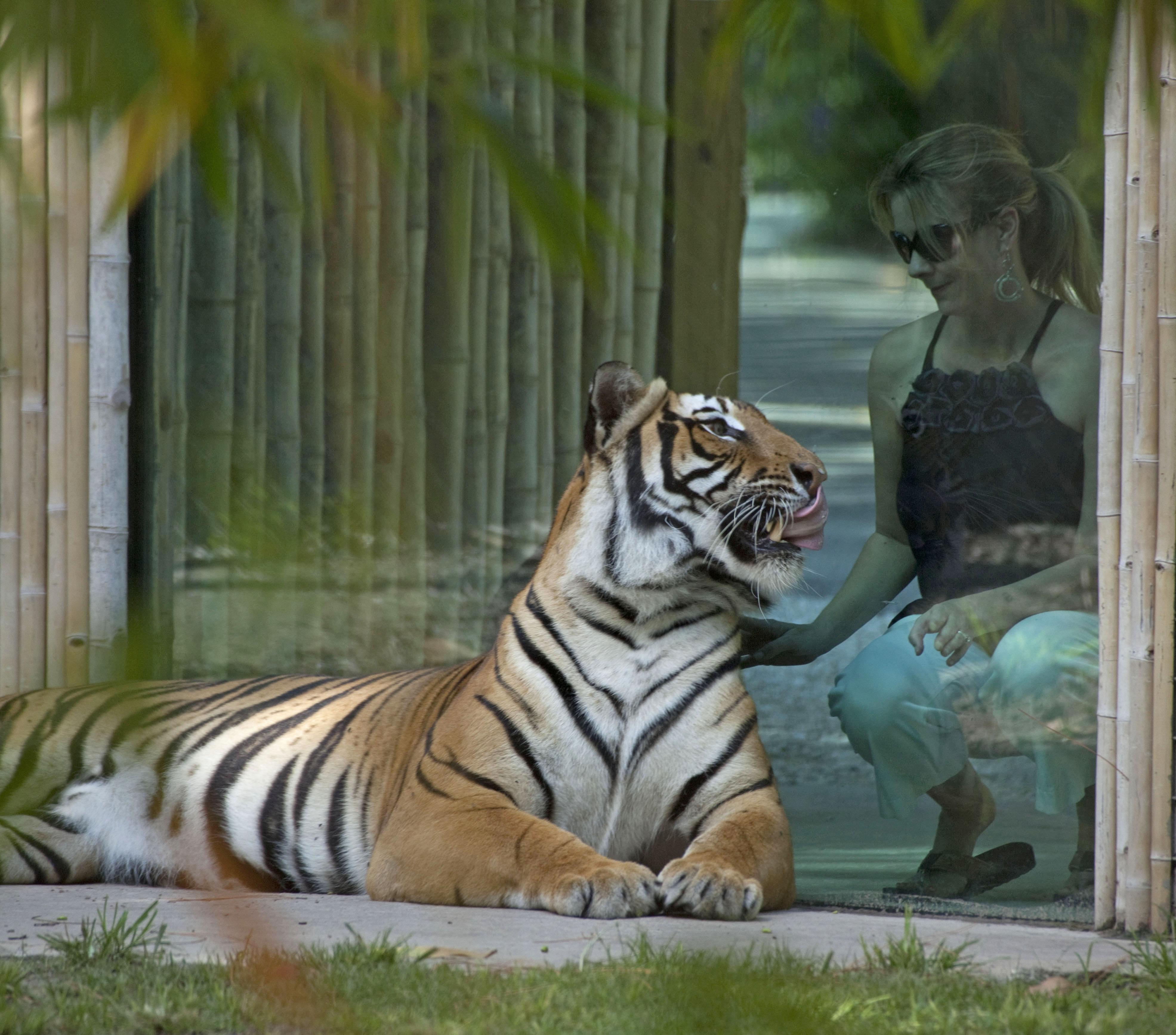 Plan Your Visit to Naples Zoo in Naples Florida today