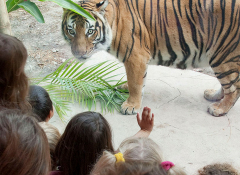 Plan Your Event at The Naples Zoo