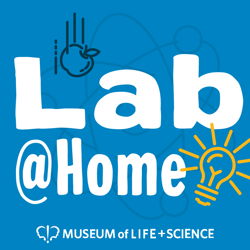Lab@Home Summer Bug Out! icon