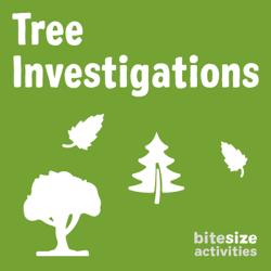 Tree Investigations