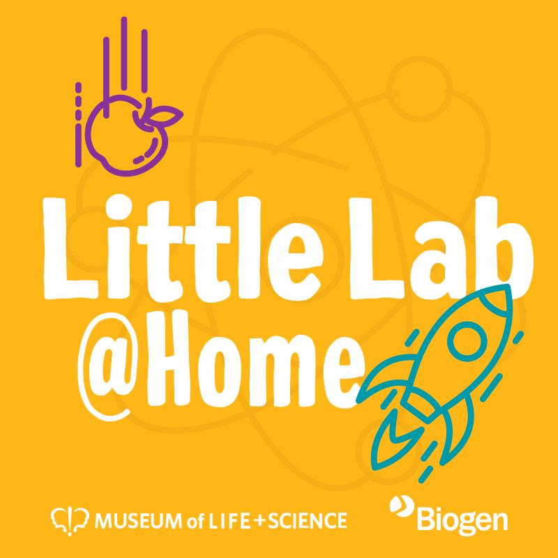 Little Lab Logo