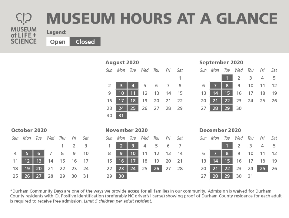 at-a-glance schedule