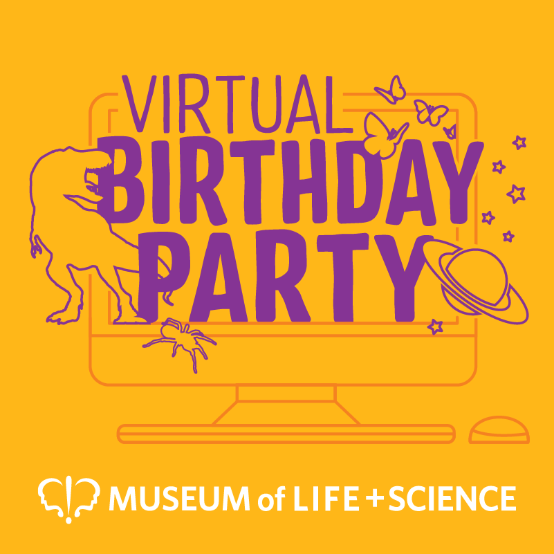 virtual birthday party logo
