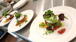 Line of salads on plates made in the Stratas Kitchen