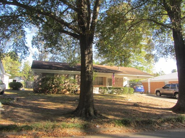 brown house shaded by tree