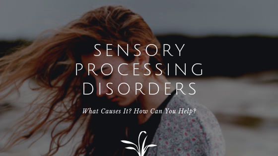 Blog Banner: Guide to Sensory Processing Disorders
